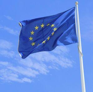 Шокиращи резултати в изследване за ЕС