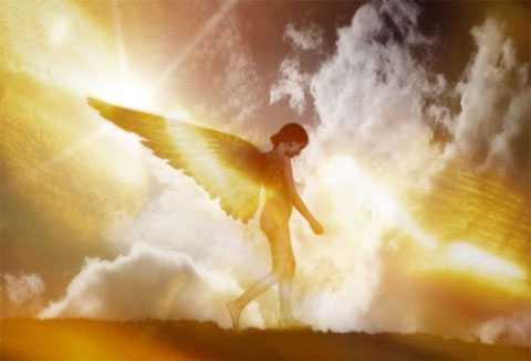 Ватикана официално призна, че ангелите съществуват