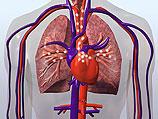 Неомъжените жени по-често умират от сърдечни болести