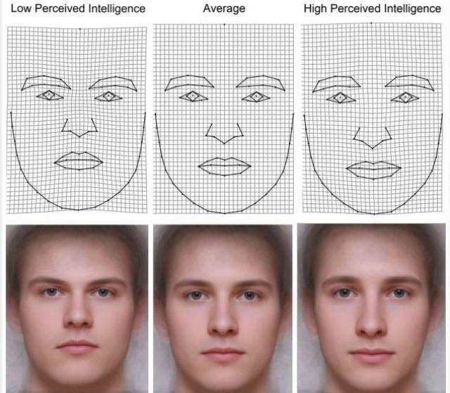 Само за жени: Интелектът на мъжа е отразен на лицето му