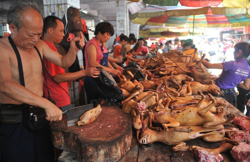 Dog-meat-festival-in-Yulin-China1