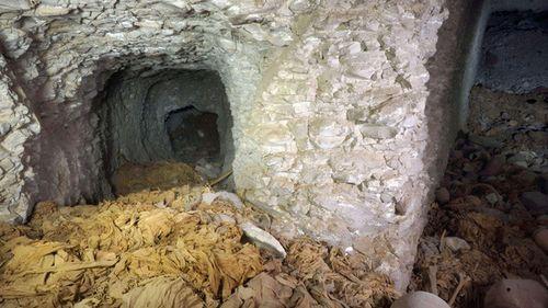 В Египет откриха гробница на фараони на повече от 4  хиляди години