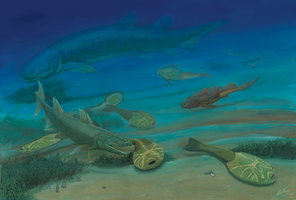 xitun___life_in_the_early_devonian_by_gogosardina-d59zrmf