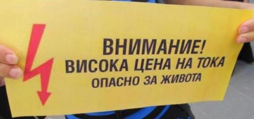 izbori-2013-erp-tata-darzhavni-ili-chastni