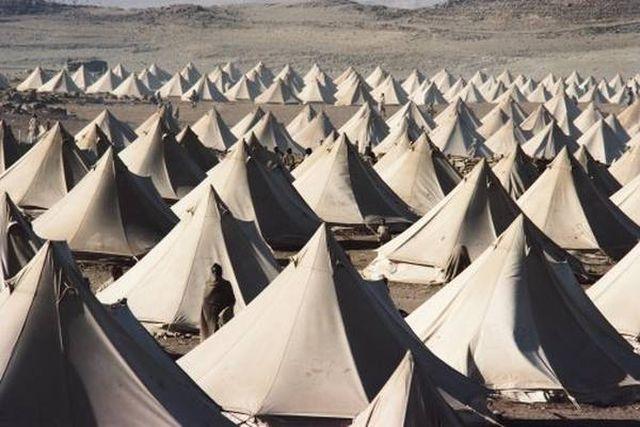 Храната за   бежанците струва  10 млн. лв. на година