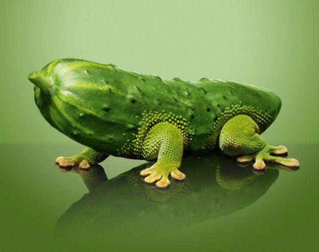 ЕС одобри 10 нови ГМО храни