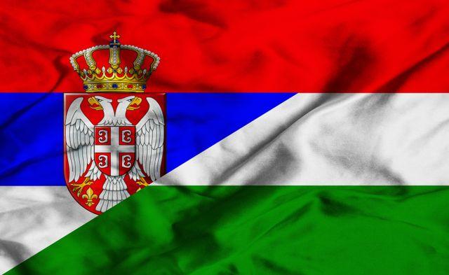 Сърбия заплаши  Унгария с армията си заради бежанците