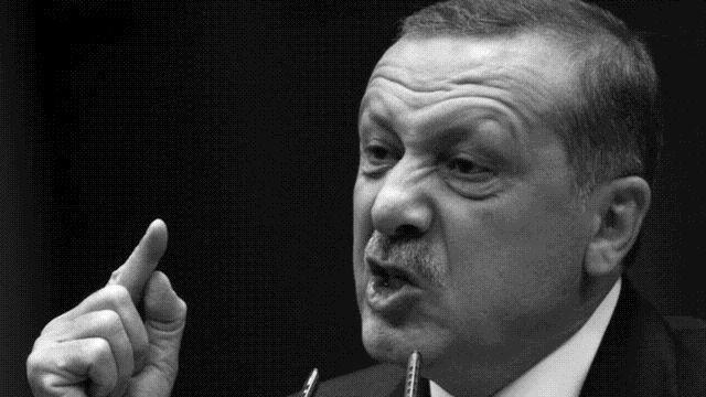Ердоган: хитлеристка Германия е пример за ефективна  президентска система