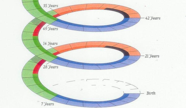 Човешкият живот се развива по седемгодишни неизбежни цикли