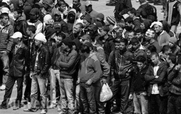 Адвокат oт БХК  писа на Бъчварова: Не награди, а наказания за ловците на бежанци
