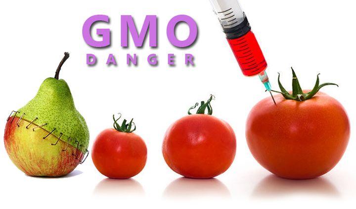 ЕС отстъпи пред САЩ за ГМО