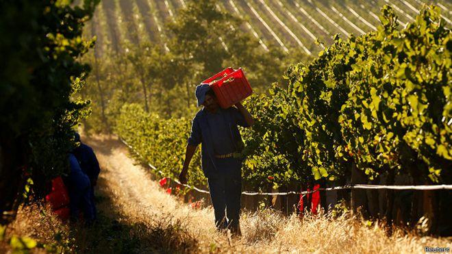 ЮАР: Парламентът  отне  земята на белите фермери