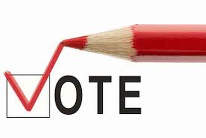 Референдумите в България – демокрация или бутафория?