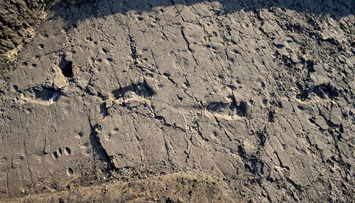Изумително: Преди 3,7 милиарда години на Земята е имало живот!