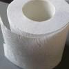 Впечатляващо: Казахстански учени създадоха тоалетна хартия за многократна употреба