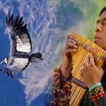 """""""Полетът на кондора"""": 100-годишната перуанска мелодия, която завладя света! (видео)"""